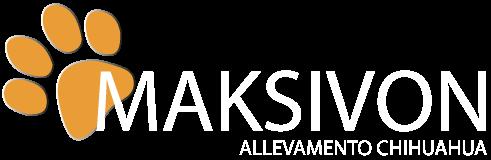 Logo-maksivo-bianco